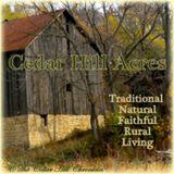 The Cedar Hill Chronicles
