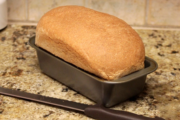 Grandma's Perfect Whole Wheat Bread