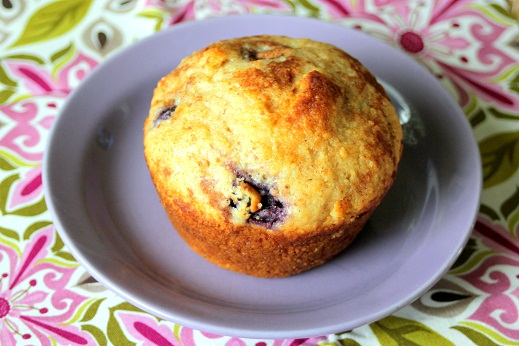 wondermill blueberry muffin