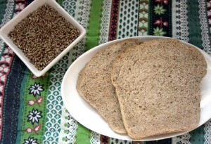 Learning to Mill My Own Flour (Plus, a 100% Whole Wheat Sandwich Bread Recipe)