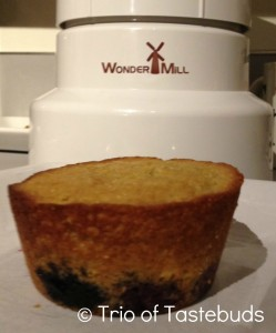 blueberry corn oat muffin
