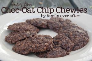 choc-oat-chip-chewies1