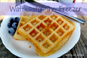 Homemade Toaster Waffles – Perfect for Back2School