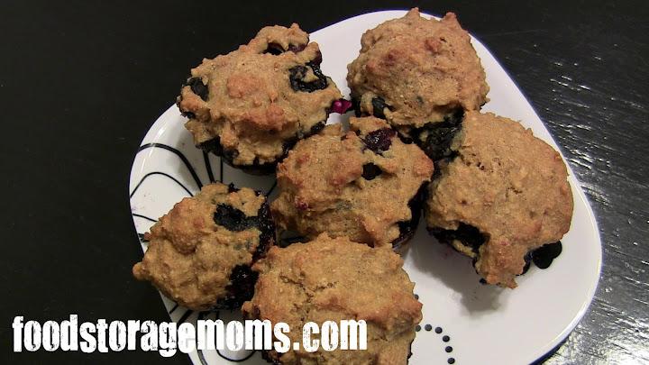 Whole Grain Blueberry Oat Flour Mini Muffins