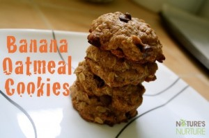 Honey-Sweetened Banana Oatmeal Cookies (Dairy & Egg Free!)