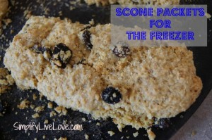Mix & Match Scone Packets for the Freezer ~ Breakfast Simplified