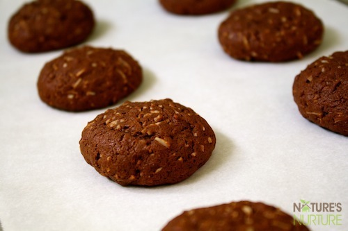 Chocolate-Coconut Cookies with Honey & Coconut Oil