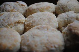 Southern Style Whole Wheat Biscuits