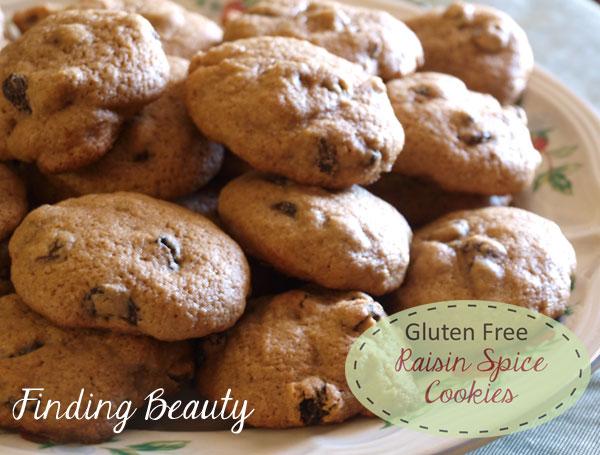 Gluten Free Raisin Spice Cookies