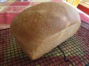Recipe Box: Whole Wheat Bread