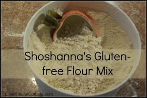 How to Grind Your own Gluten-free Flour