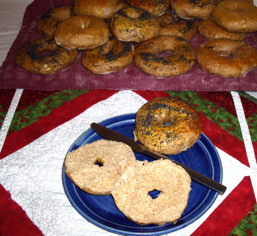 Chewy, delicious whole wheat bagels