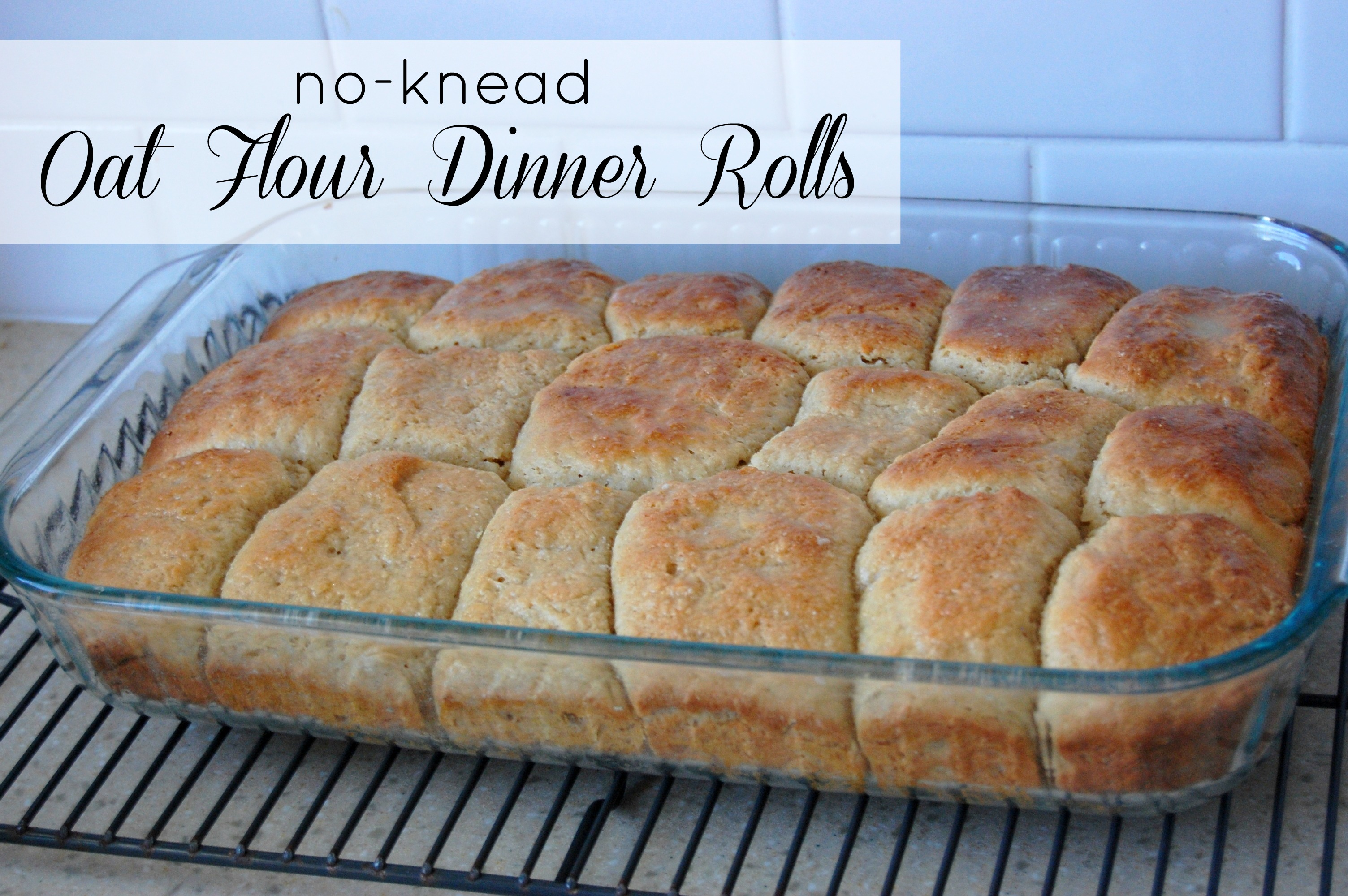 No-Knead Oat Flour Dinner Rolls Recipe