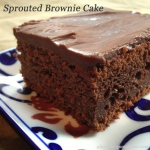 Sprouted Chocolate Brownie Cake (or Soaked)