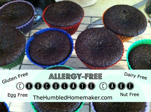 Allergy-Free Chocolate Cake That Tastes Like the Real Thing! {Gluten, Dairy & Egg-Free!}