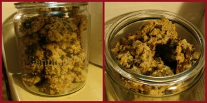 Oatmeal Chocolate Chip Cookies with Pinto Bean Flour