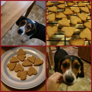 Super Easy Dog Biscuits