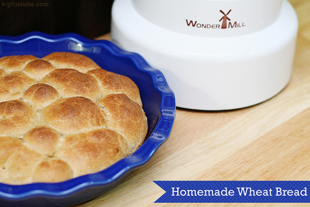 Homemade Wheat Rolls