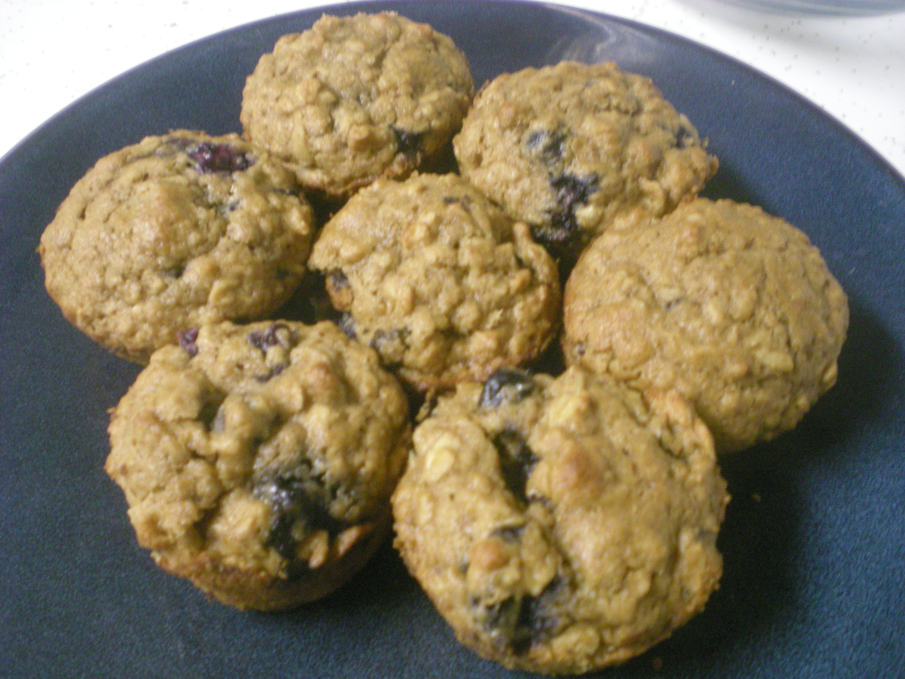 Oat and Blueberry Muffins
