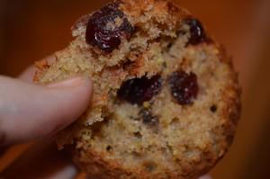 Cranberry Orange Muffins10