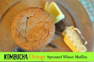 kombucha orange sprouted muffins