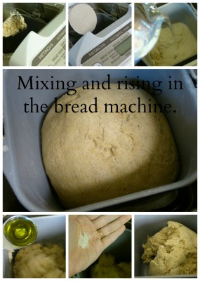 Sourdough mix collage