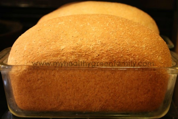 100% Whole Wheat Honey Bread. Simply, The Best!