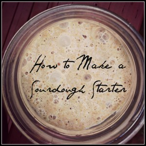 How to Make a Whole Wheat Sourdough Starter