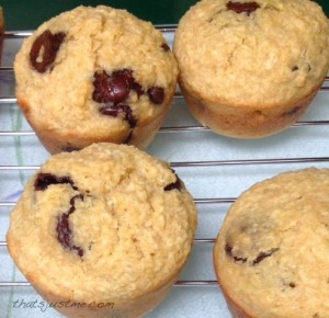 Kamut coconut chocolate chip muffins