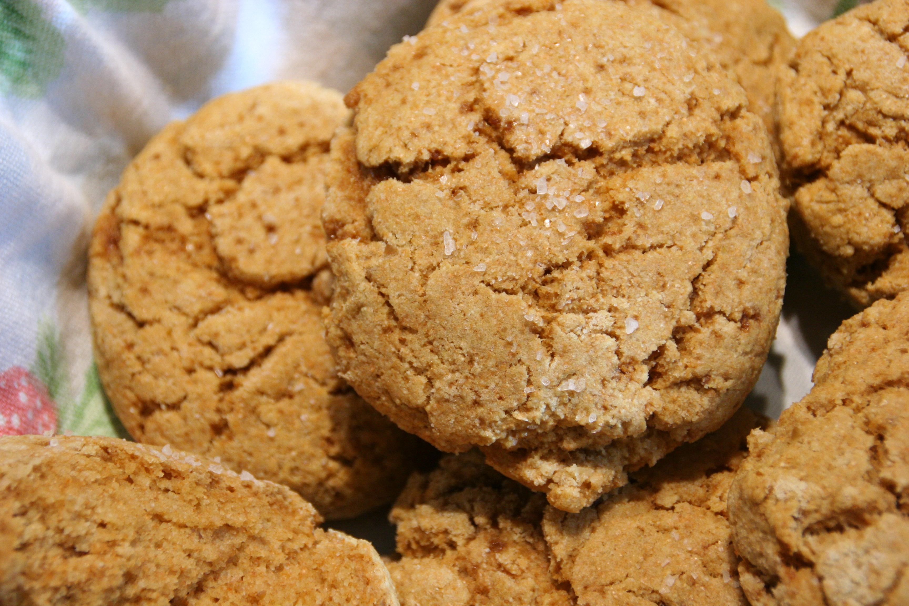 Fresh Kamut Flour Vegan Biscuits Save the Day!