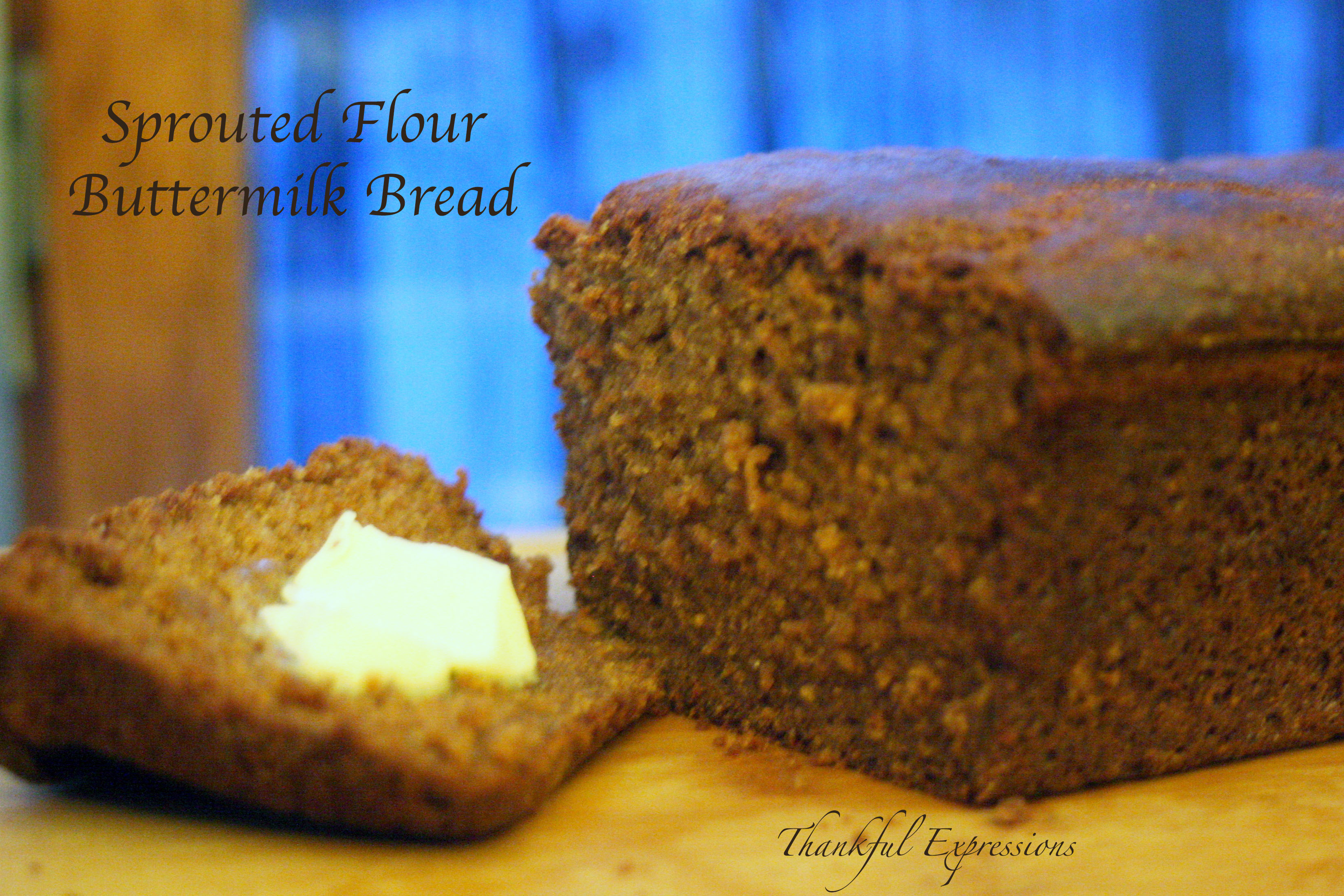 Sprouted Flour, Buttermilk Bread