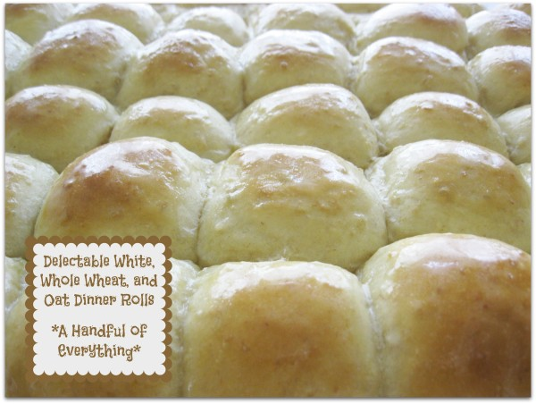 Delectable White, Whole Wheat, and Oat Dinner Rolls