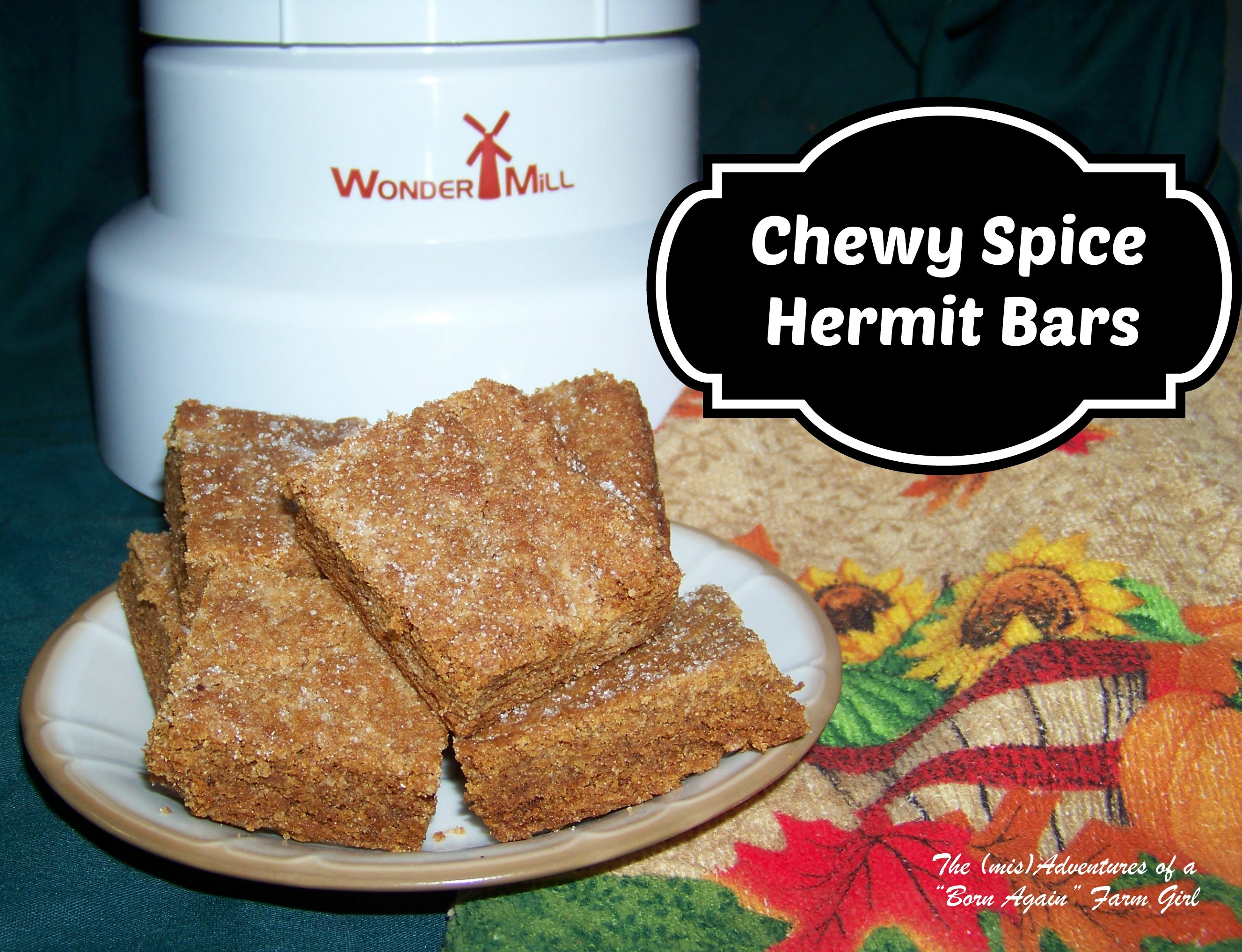 Chewy Spice Hermit Bars