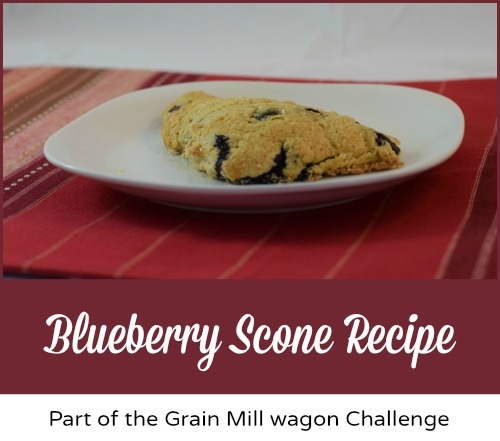 Blueberry-Scone-Recipe