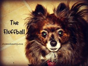 The Fluffball