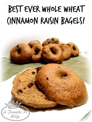 Whole Wheat Cinnamon Raisin Bagels
