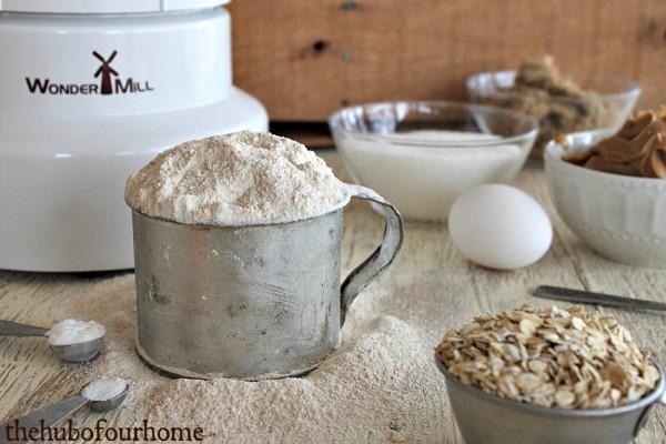 ww peanut butter oatmeal0015watermark