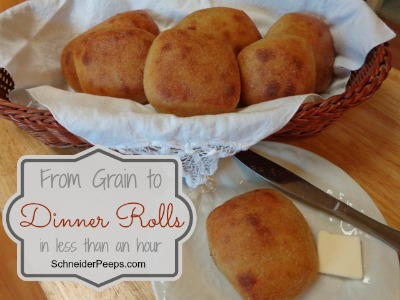 SchneiderPeeps - From Grain to Dinner Rolls in less than an hour
