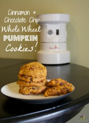 Cinnamon & Chocolate chip Whole Wheat Pumpkin Cookies