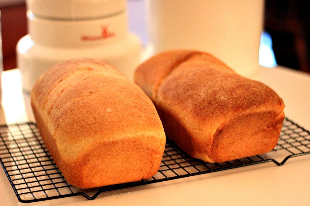 Honey Whole Wheat Sandwich Bread Loaf