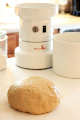 honey whole wheat bread thekneadyhomesteader dough